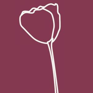 Logo_Gynaekologische_praxis